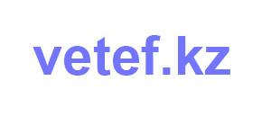Изображение Vetef.kz