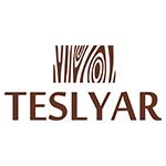 Изображение Teslyar.com // Instagram